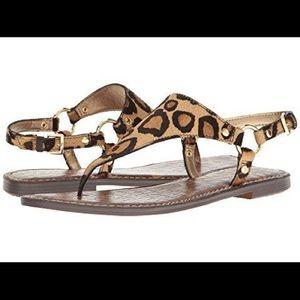 Sam Edelman Greta Thong Sandal in New Nude Leopard